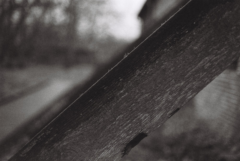 scale-diagonal-wood-black-and-white-baruth
