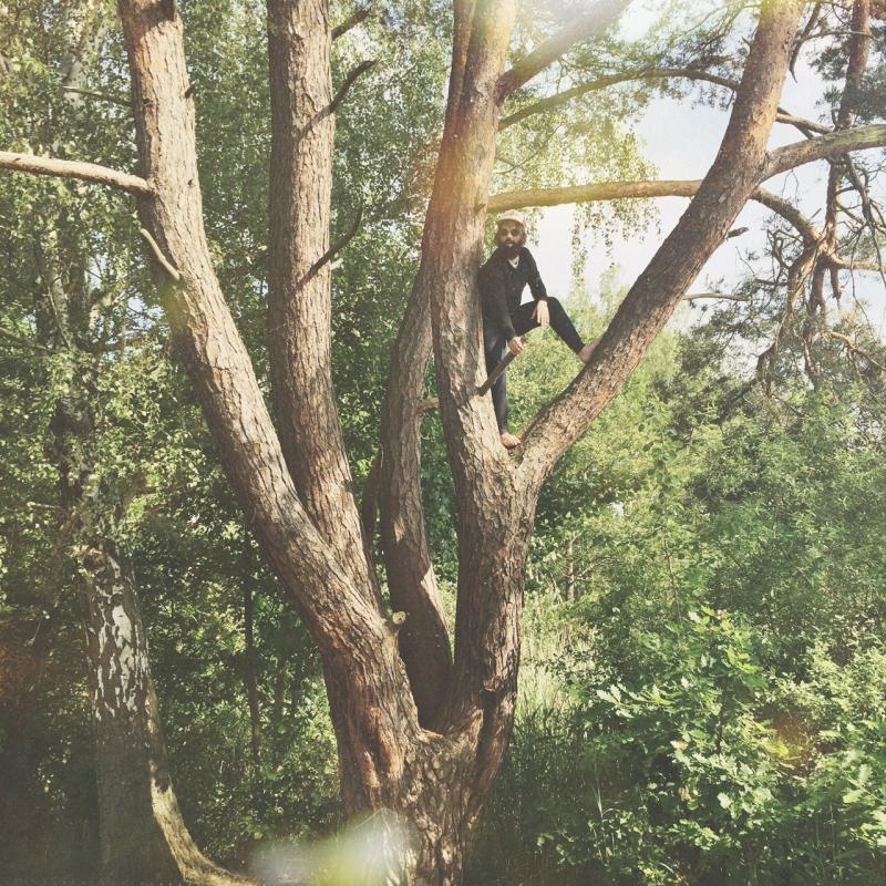 Treeclimber_s
